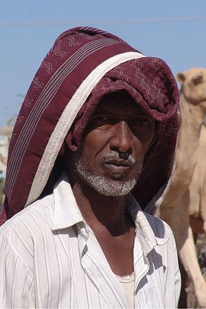 Agriculture in Somalia - A camel trader in Hargeisa, Somalia.
