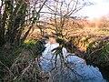Haslingbourne Stream at Haines.JPG