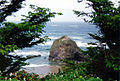 Haystack Rock by Bill Kuffrey.jpg