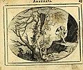 Het ambach van Cvpido, op een nieuw ouersien ende verbetert (1615) (14743078954).jpg