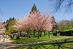 High Park, Toronto DSC 0189 (17393740575).jpg