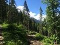 Hiking Trail near Chamonix, France - panoramio (1).jpg