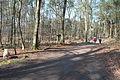 Hildener Heide 2016 068.jpg