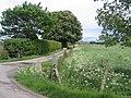 Hill's Farm, Gosberton Marsh, Lincs - geograph.org.uk - 172724.jpg