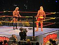 Hogan Vs Flair.jpg