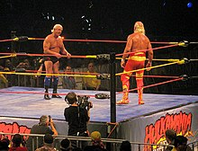 Hogan con Ric Flair sul ring prima del loro match all'Hulkamania Tour