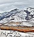 Hole in the Mountian Peak - panoramio.jpg