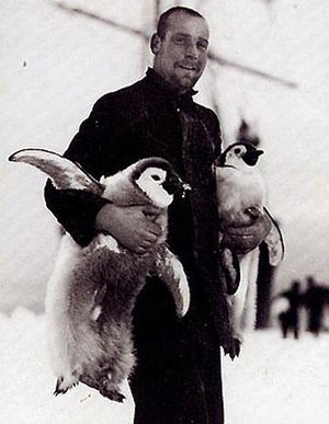 Hubert Hudson - Hubert Hudson with young emperor penguins