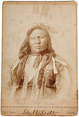 Hunkpapa Chief Rain-In-The-Face by George W Scott, c1880s.jpg