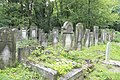 IMG 0183 Łódź Jewish Cemetery august 2018 005.jpg