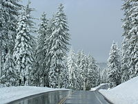 Icy California Highway 44.jpg