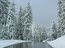 Icy California Highway 44.jpg