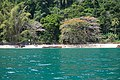 Ilha-das-couves-ubatuba-180921-040.jpg