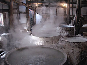 Salt in Chinese history - Industrial Salt Evaporators at Zigong