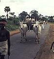 India-1970 063 hg.jpg