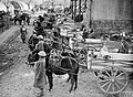Indian mule transport company parade in France 1940.jpg