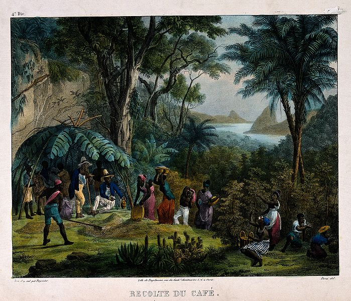 plantation laborers vs industrial workers Plantation life one ethnic group would be used as scab labor to break the strike of another ethnic group response of workers in hawaii.