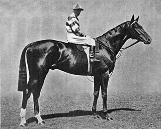 Irish Elegance British racehorse