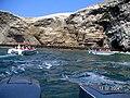 Islas Ballestas - panoramio (15).jpg