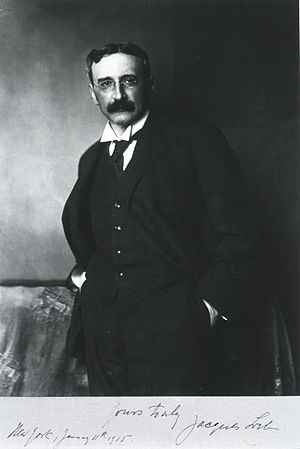 Mayen - Jacques Loeb around 1915