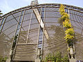 Jardin botanico valencia 14012007.jpg
