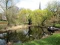 Jardin botanique de Strasbourg - étang.jpg
