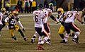 Jay Cutler - January 2, 2011.jpg