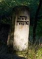 Jewish cemetery Otwock Karczew Anielin IMGP6781.jpg