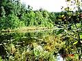 Jeziorko Sucharek - panoramio.jpg