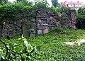 Kamienna Góra, cmentarz żydowskiPICT6599.JPG