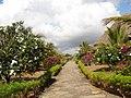Karibuni resort a Mambrui, un giardino sull'oceano - panoramio.jpg