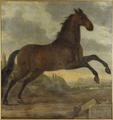 Karl XIs livhäst Sultan (David Klöcker Ehrenstrahl) - Nationalmuseum - 14797.tif