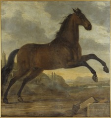 Karl XI:s livhäst Sultan