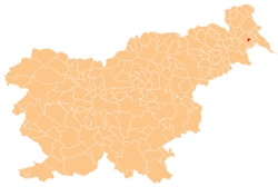 Location of the Municipality of Odranci in Slovenia