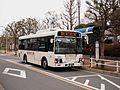 Keisei Town Bus T056 Shinkin Line.jpg