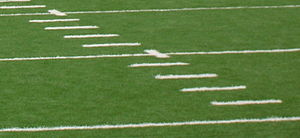 Hash marks - ...at Dix Stadium (above)