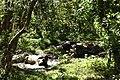 Kenting National Park WAN,CHIA-LIANG萬家良 92865.jpg
