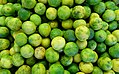 Key lime (Citrus × aurantiifolia) - DSC09279.jpg