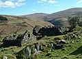 Killabrega Farm - Isle of Man - geograph.org.uk - 31563.jpg