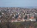 Kis-Sváb Hill Protection Area. View to Rézmál and Törökvész quarters. - Budapest.JPG