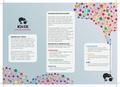 Kiwix Brochure DE.pdf