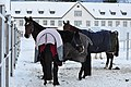 Kloster Einsiedeln - Marstall 2010-11-29 15-55-04.JPG