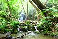 Koleshinski vodopad 33.JPG
