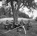 Kosci pri počitku, košnja pri Poljancu, Male Lipljene 1964.jpg