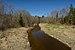 Kuusiku jõgi Sillakõrtsi truubi juures.jpg