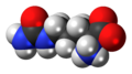 L-Citrulline-zwitterion-3D-spacefill.png