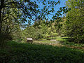 LSG Thüringer Wald Teiche an der Talmühle Wickersdorf 1 DE-TH.jpg