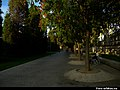 La Chopera, 28045 Madrid, Spain - panoramio (17).jpg