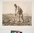 Labor (ou Le paysan à la houe), d'après Millet (NYPL b14693583-1153439).jpg