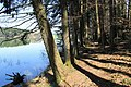 Lac de Bret - panoramio (36).jpg